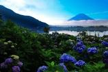 文月の富士
