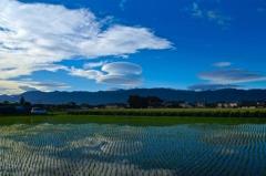 台風一過と巨大吊し雲