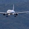 ANA landing 171020