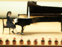 The day of a piano Ⅴ