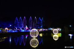 光の祭典2017-②