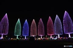 光の祭典2017-④