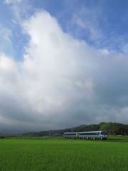 地元の鉄道風景「のんびりと」