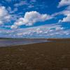 カニの荒らした砂浜