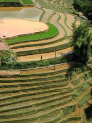 ベトナム北部にある棚田