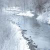 末川の霧氷