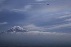 富士三昧327