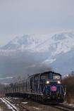 dream train