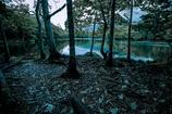 goddess pond