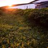 highland sunset