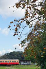 沿線の秋②