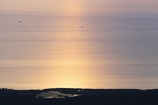 パープルに染まる海