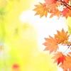 秋彩物語 ~雨音~