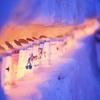 千の雪灯り~わたしの夢は~