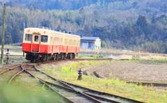 春が待ち遠しい ~早春の小湊鉄道~