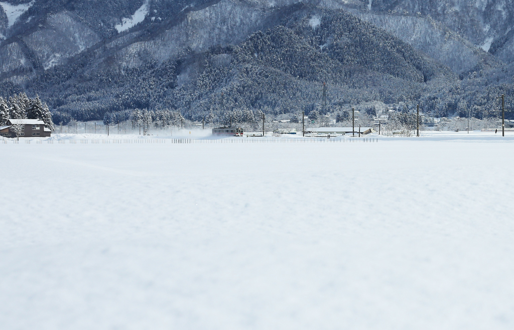 クリームみたいな雪原