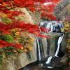紅葉を纏って -袋田の滝-