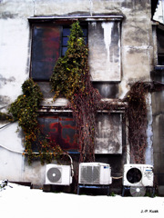fukui, jan. 2012