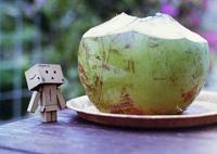 沖縄・椰子の実ジュース屋さん (1)