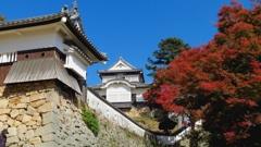 日本一高い山城~備中松山城