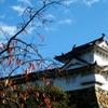 晩秋の姫路城 2
