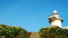 灯台と水仙の島 六島