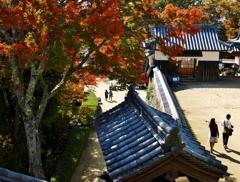 備中松山城の紅葉