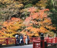 天神峡の紅葉(井原)