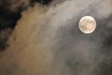 妖しい月夜