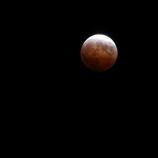 月食の日の悲劇 #11