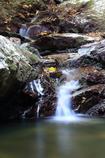 岩と落葉と水の流れ2