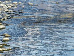 流れる氷 DSCN2518