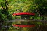 紅いのは橋だけ