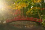 事待池の秋