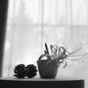 窓辺の秋。。♪ (2)