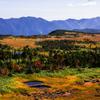 湿原の紅葉