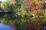 水面にも秋
