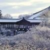 京都 東福寺 雪の朝
