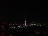 京都 ピンク色の京都タワー