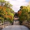 京都 初秋の参道