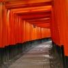 京都 伏見稲荷大社 鳥居の道