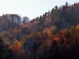 北海道 豊平峡の晩秋