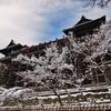 京都 清水舞台 雪の飾り