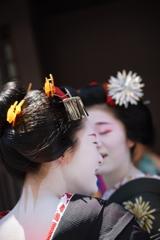 京都 祇園甲部 八朔