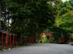 滋賀 日吉大社 西の参道