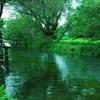 水車と翠の空間