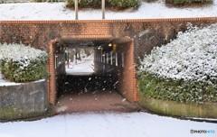 トンネルを抜ける前も雪