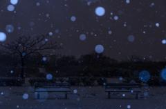 雪降る日に