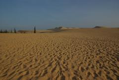 White Sand Dunes 3