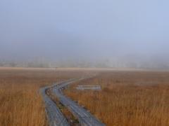霧に沈む尾瀬ヶ原